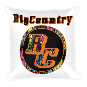 BigCountry Pillow