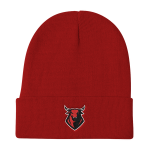 TOR1TO13 Beanie