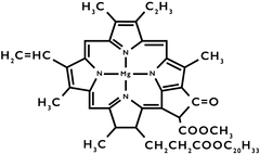 Nourish - Chlorophyll Chemical Structure