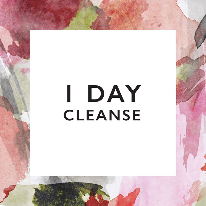 1 Day Cleanse: Newbie