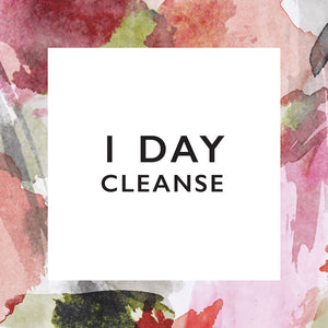 1 Day Cleanse with Nature Pressed Juicery