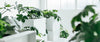 Vertical Planters and Divider Walls
