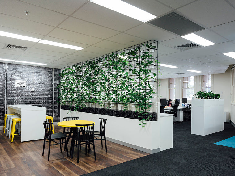Plaut IT Melbourne HQ