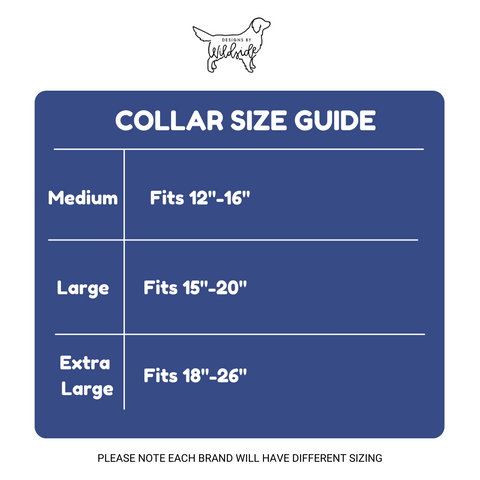 Fi Compatible Collar | Galaxy