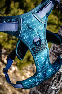 Summit Adventure Harness - Designs By Wildside