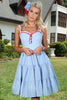 Swiss Miss Dress