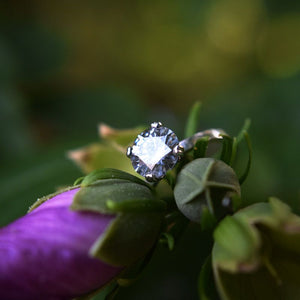 2.0 Carat Coffee Moissanite Stone with Diamond Accent Stones  14K White Gold Ring