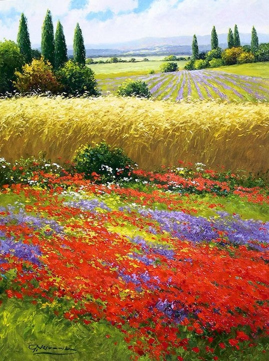 Canvas Painting, Landscape Painting, Flower Field, Wall Art, Large Painting, Living Room Wall Art, Cypress Tree, Oil Painting, Canvas Art, Poppy Field-Paintingforhome