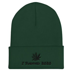 I Survived 2020 Cocareef Cuffed Beanie