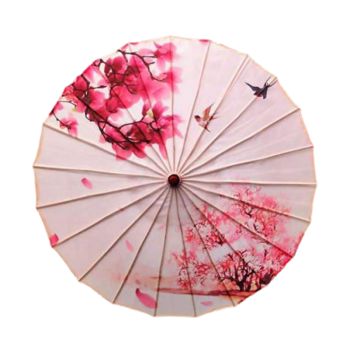 Parapluie Japonais Traditionnel