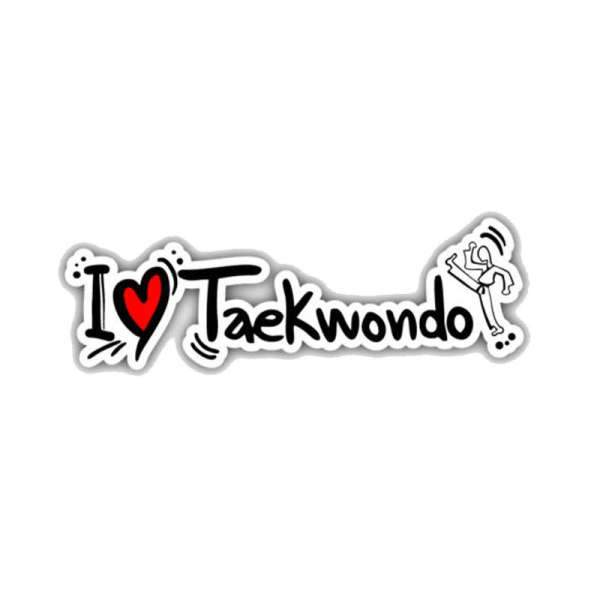 Sticker Voiture Taekwendo