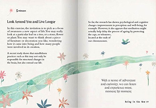 The Little Book of Mindfulness : 10 Minutes a Day to Less Stress, More Peace - Spiffy