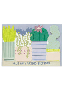 """Have An Amazing Birthday"" Cactus Birthday Card - Cards - Happy Birthday - Spiffy"