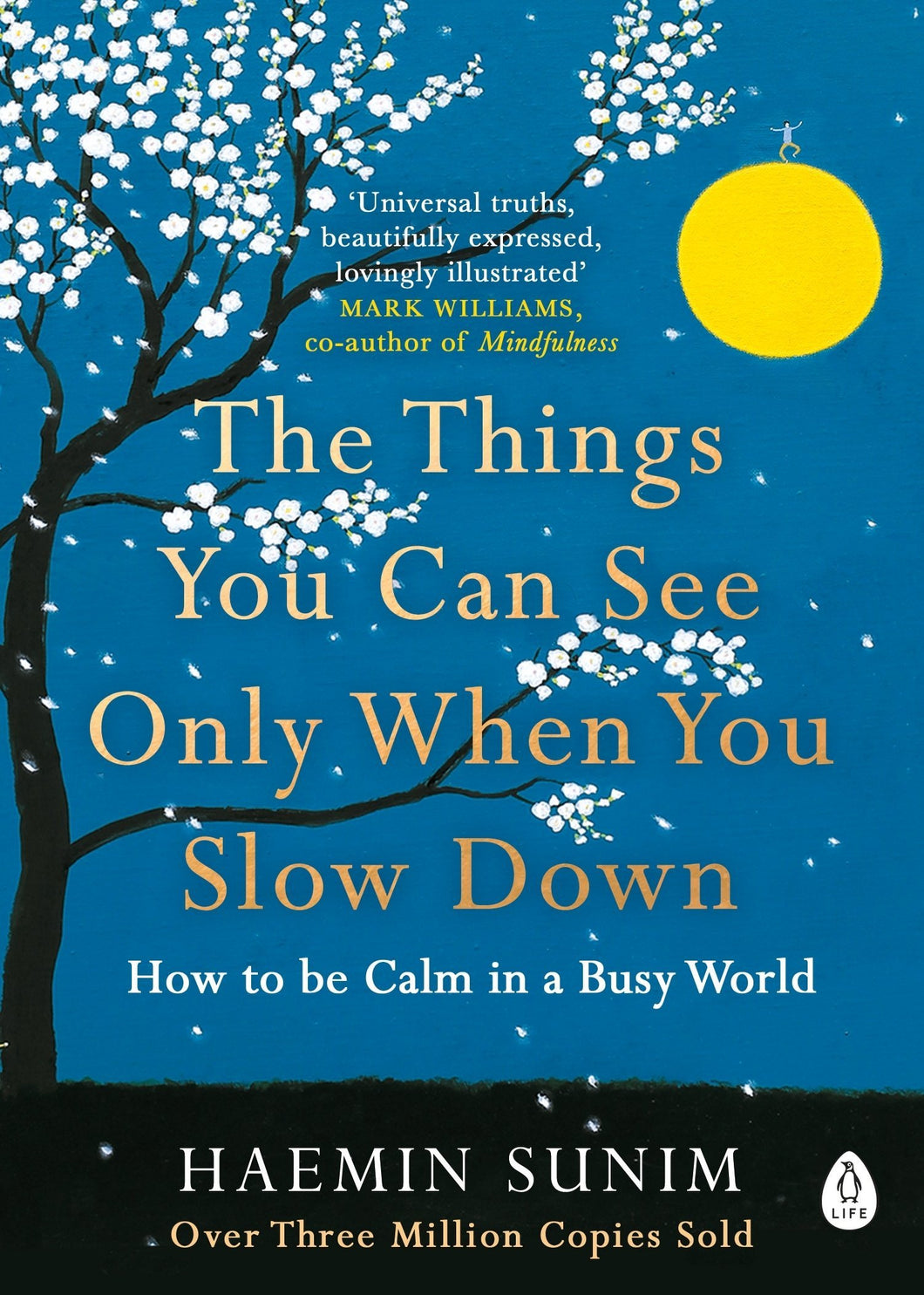 The Things You Can See Only When You Slow Down (Book by Haemin Sunim)