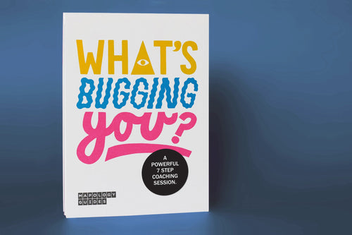 What's Bugging You Mapology Guide - Spiffy