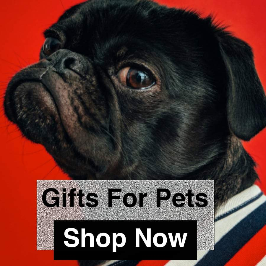 Gifts For Pets Section, Shop the trendiest Christmas Gifts
