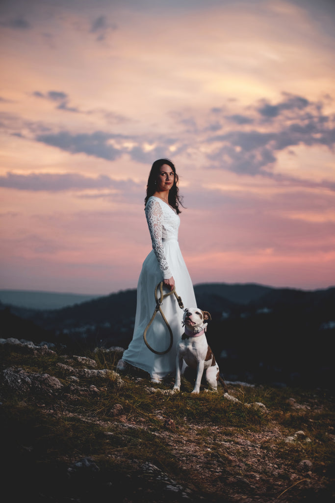 Best Wedding Ideas to Include your dog
