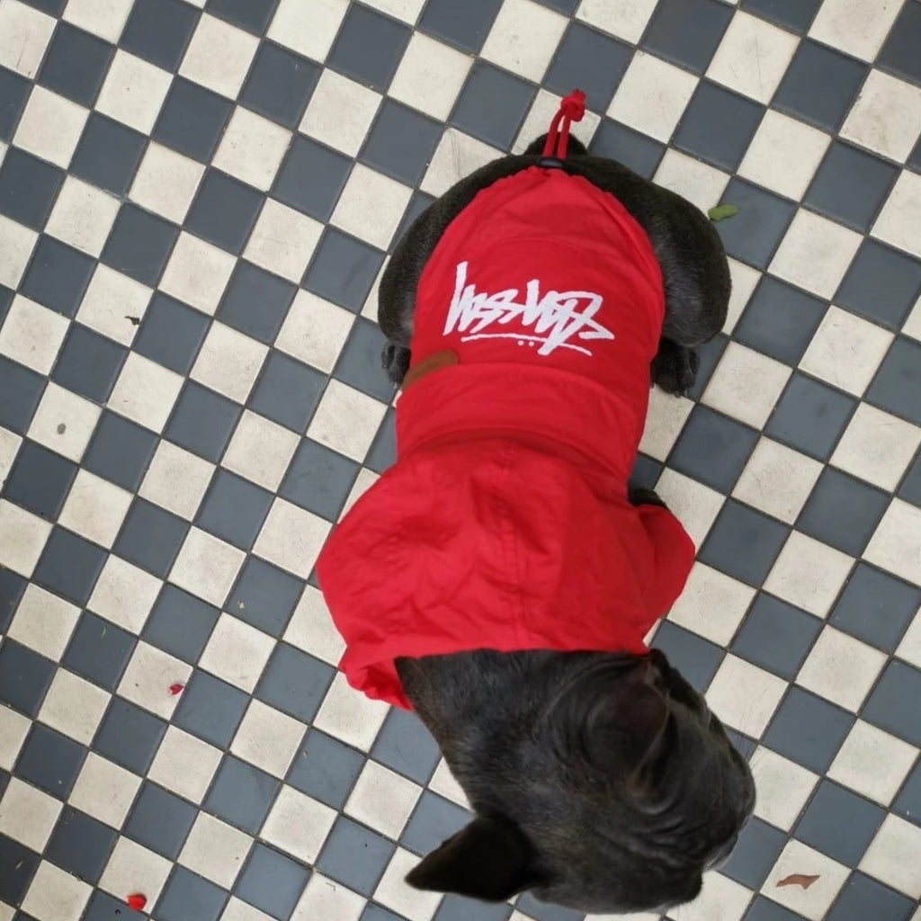 French bulldog Raincoat Red Colour - top view