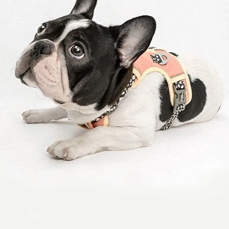 French Bulldog Nylon Harness - Pink Paw Colour