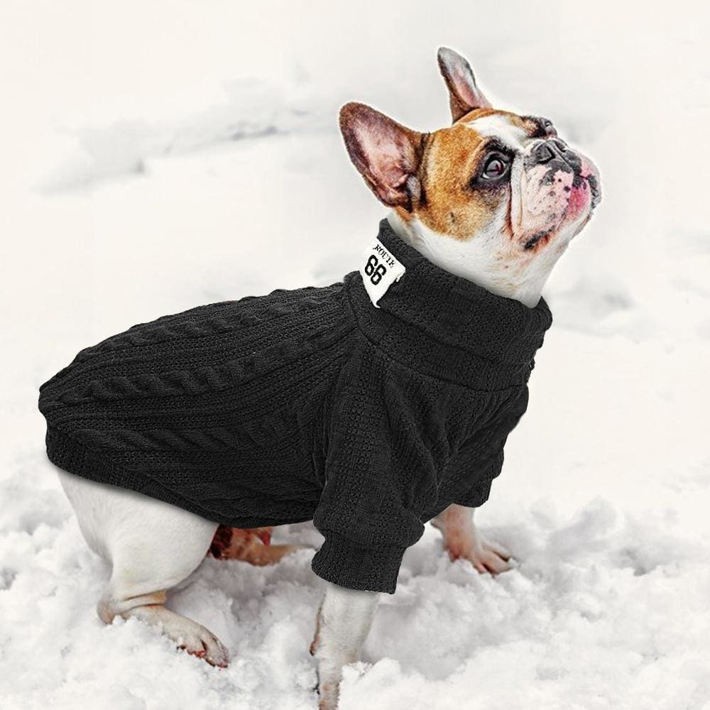 Gizmo Classic Knit Small Dog Sweater - French bulldog Black sweater