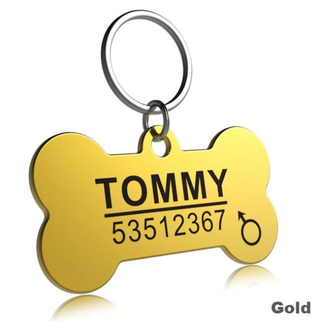Little Chester Dog And Cat Engraved Id Tag - Bone Gold / L - Dog Collar