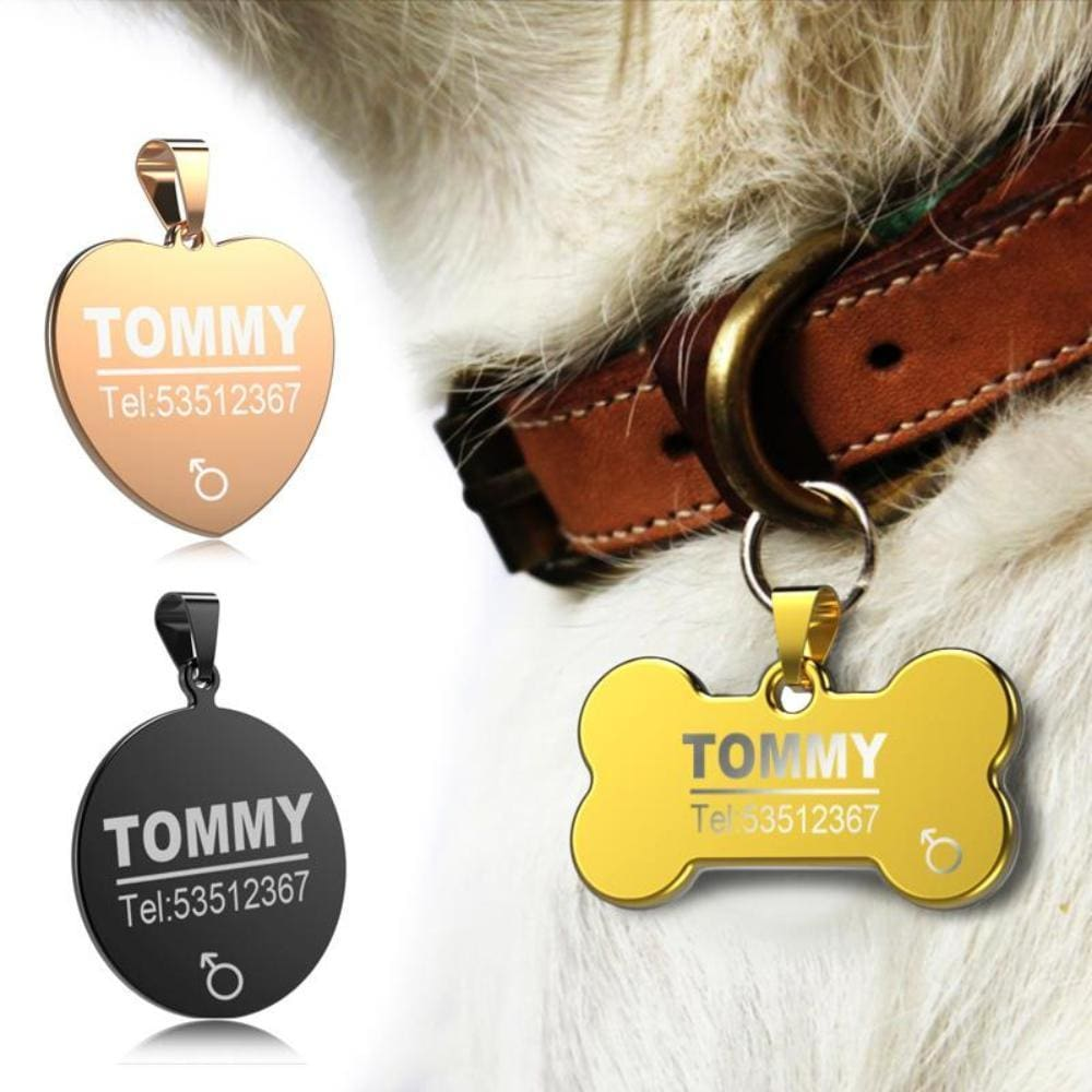 Little Chester Dog And Cat Engraved Id Tag - Dog Collar