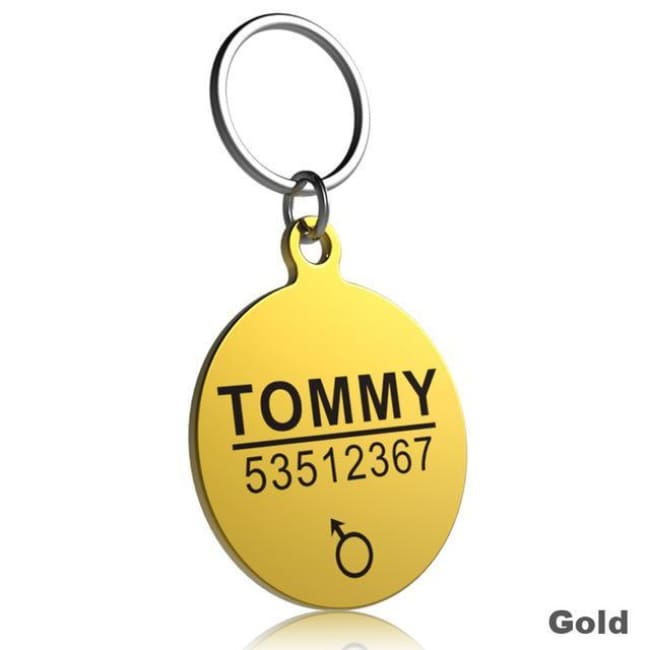 Little Chester Dog And Cat Engraved Id Tag - Round Gold / L - Dog Collar