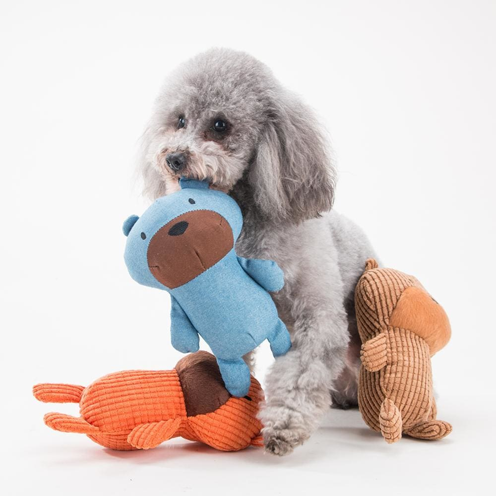 Mr Squeaky Teddy Plush Dog Toy - Dog Toys