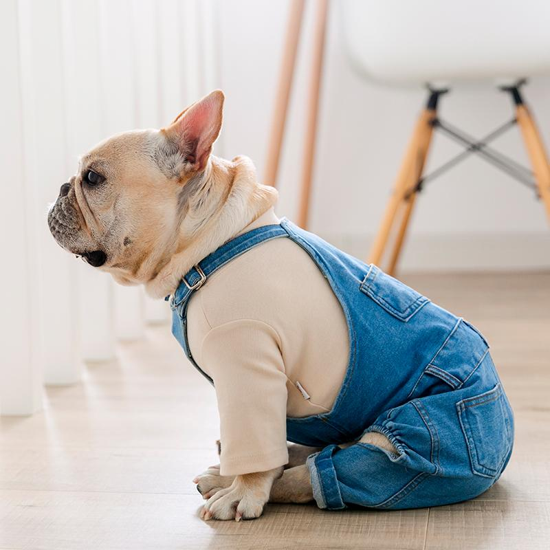 French bulldog pants - Frenchi dog model wearing denim and shirt side view picture