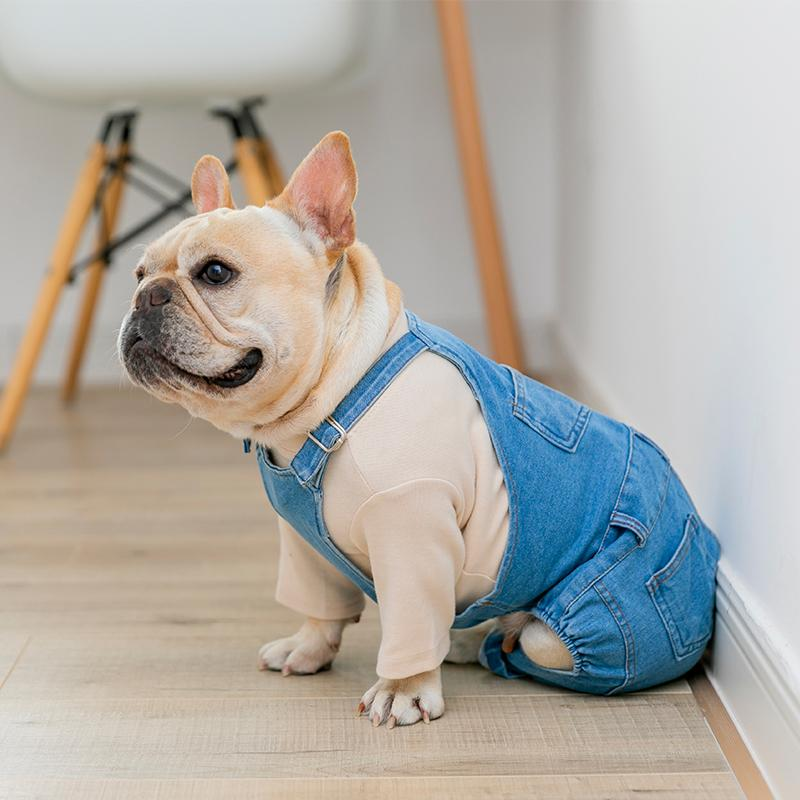 French bulldog pants - Frenchi dog model wearing denim and shirt side view picture 2