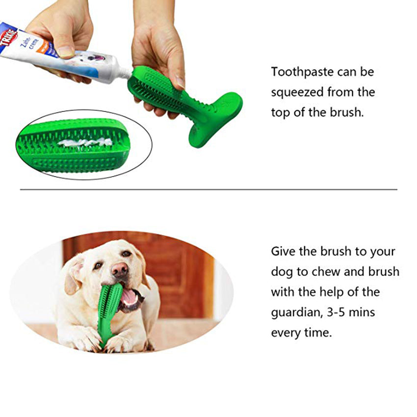 Dog teeth cleaning stick - how to use