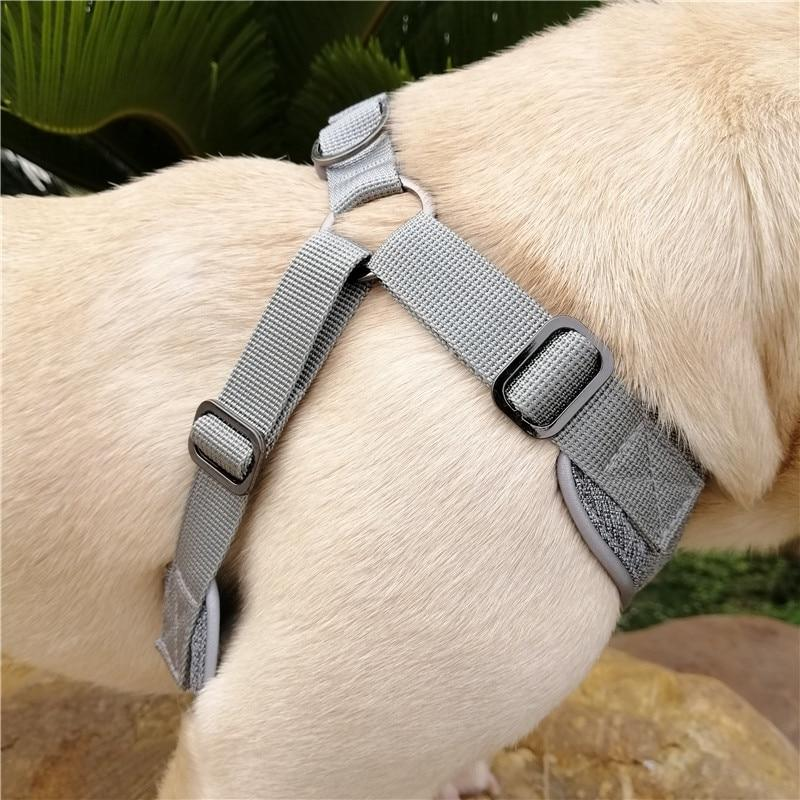 Grey French Bulldog No pull Harness - side view