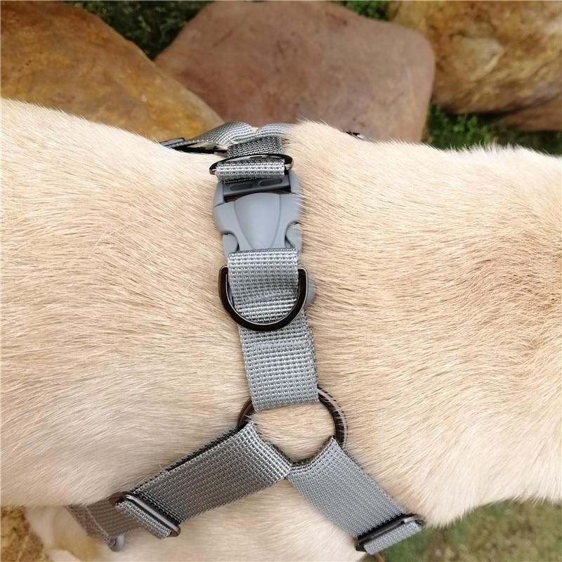 French Bulldog No pull Harness- side view