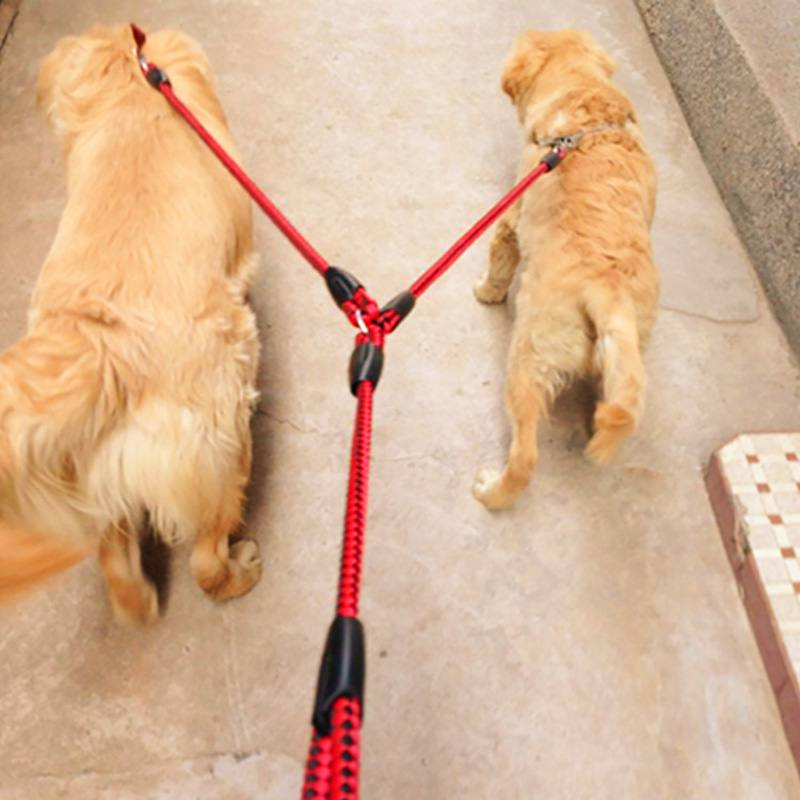 Dual Dog Leash - Red Colour