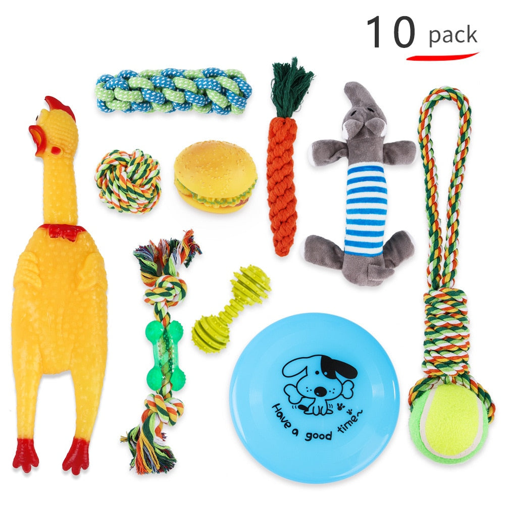 Puppy Starter Pack Selection Of Toys Gift Hamper - pack of 10