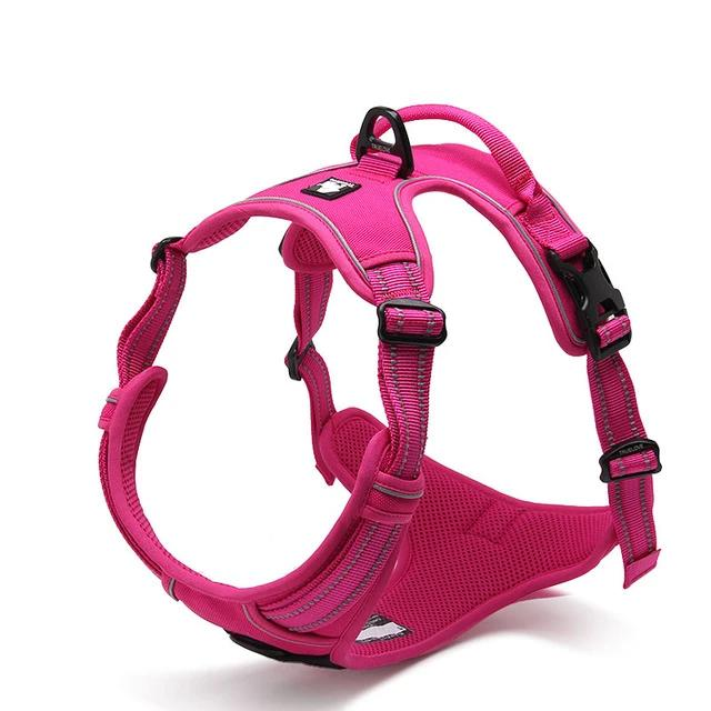 All Weather Reflective Nylon French Bulldog Harness - Fuchsia Colour