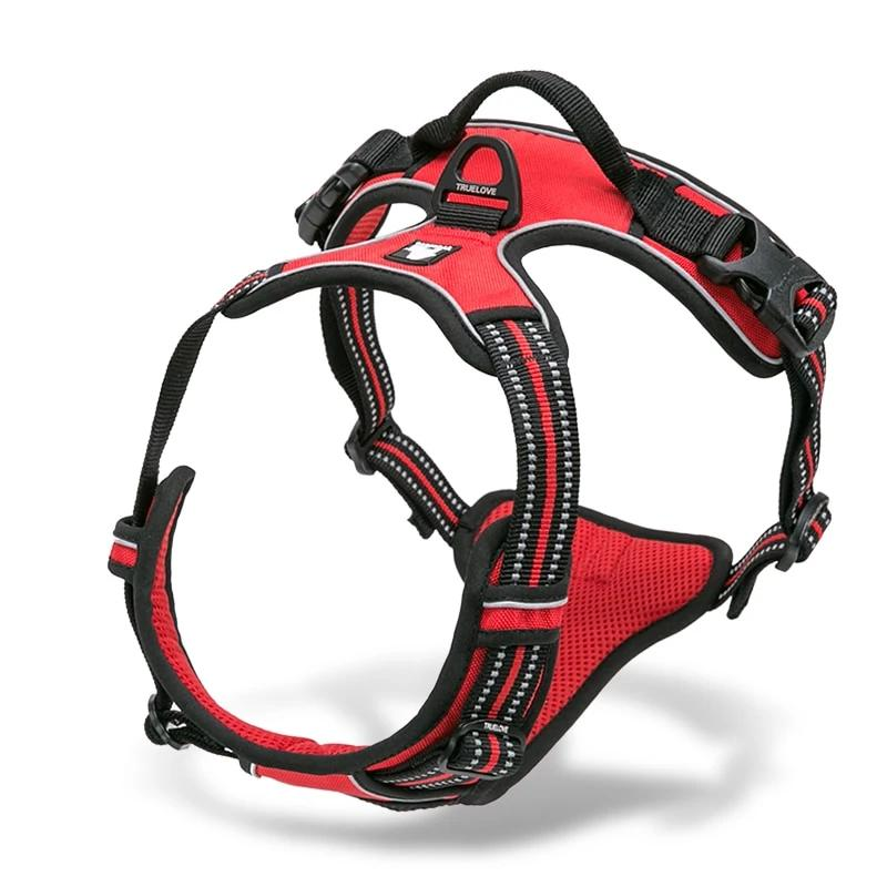 All Weather Reflective Nylon French Bulldog Harness