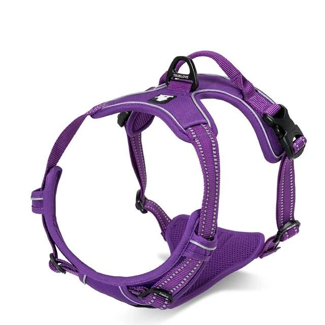 All Weather Reflective Nylon French Bulldog Harness - Purple Colour