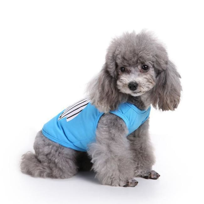 Small Dog Body Warmer - As The Pic / S - Dog Clothes