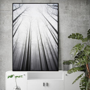 Misty Forest Canvas Poster