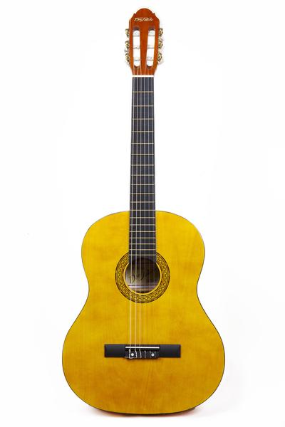 Guitarra Don Pablo 39