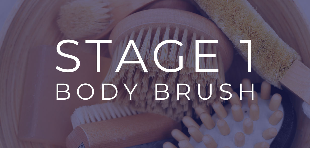 Stage 1 Body Brush