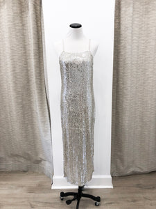 Mackaela Dress in Silver Sequins