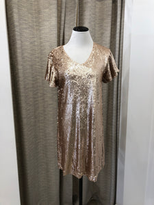 Carriage Sequin Dress