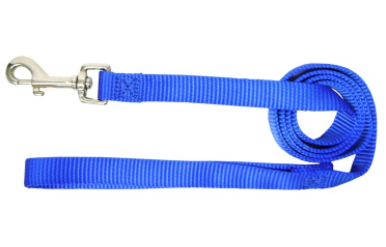 Hamilton Blue Nylon Leash 6'
