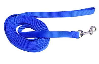 Hamilton Training Lead 10' Blue
