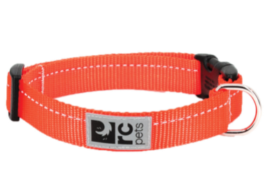 RC Pets Primary Clip Collar Orange