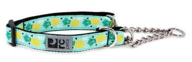 RC Pets Training Collar Pineapple
