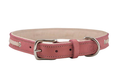 Shedrow K9 Banyon Leather Collar Red (Assorted Sizes)