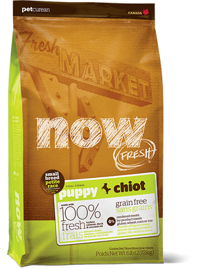 Now Puppy Small Breed Dog Food 6 lb